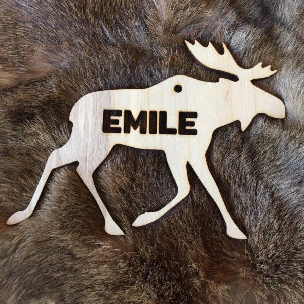 Moosehanger voor Emile
